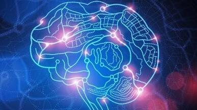 类脑智能开放平台暨人工智能开放社区在合肥发布