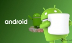 谷歌发布10月份Android版本适配率报告:Nogat下滑至28.1% Oreo升至22.5%