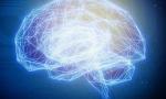 """Data61成立新的""""伦理道德""""人工智能研究所"""