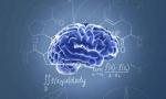 探寻人工智能终极目标 类脑智能科技盛宴在合肥开启