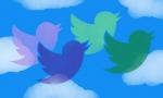 """Twitter被分析家称为""""社交媒体的哈维·温斯坦""""后,股价下跌"""