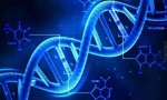 Emedgene融资600万美元专研人工智能基因组学