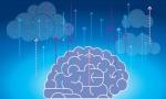 网络运营中的人工智能技术深受运营商青睐