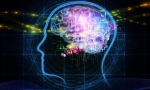 """大脑植入微芯片 未来五年人类可实现""""超智能"""""""