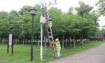 湖北移动升级天网工程 县域天网服务能力提升3倍