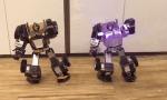 全球首款消费级变形机器人乐森机器人(Robosen)完成A轮1亿元融资