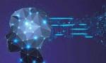 谷歌首席决策科学家:AI难免犯错,唯有人类可以悬崖勒马