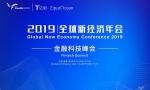 眼神科技王希佳出席2019全球新经济年会