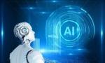 美国发布人工智能标准制定指南,既要防止技术损害又要够灵活