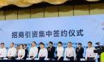 龙猫数据与重庆云阳签订战略合作协议,共筑人工智能发展之基