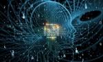 """走出实验室丰富应用场景,进博会成全球人工智能""""秀场"""""""