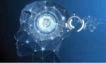 人工智能将在回归理性中走向新的飞跃