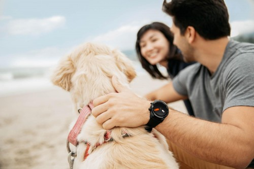 TicWatch Pro 2020发布:超长30天续航、支持eSIM一号双智能手表