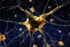 我国发布亿级神经元类脑计算机,颠覆传统模式,构建全新人工智能