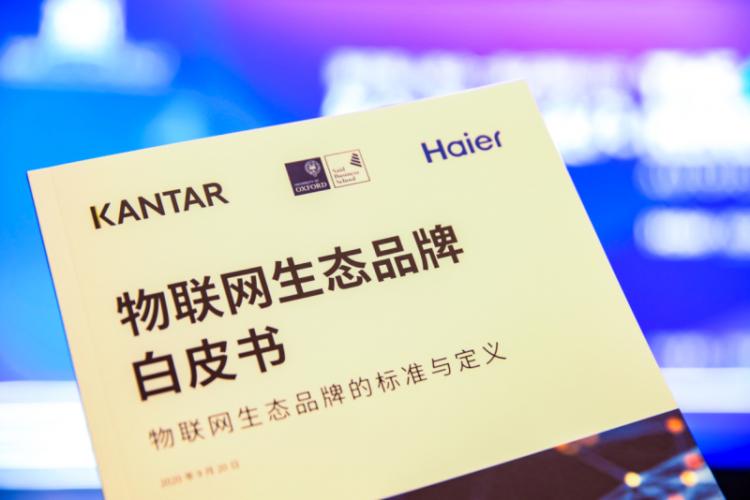 物联网生态品牌标准发布:海尔引领中国品牌进入下一个周期