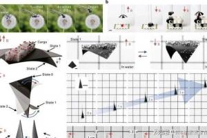 外媒消息:约翰内斯·开普勒大学研究人员研发捕蝇机器人