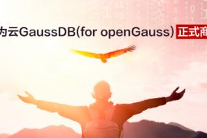 华为云GaussDB(for openGauss)正式商用背后的六大黑科技