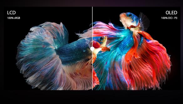 5k以内最佳AMD+OLED屏笔记本选择