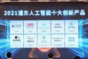 浦东打造立体化新格局,25个人工智能项目成功落地