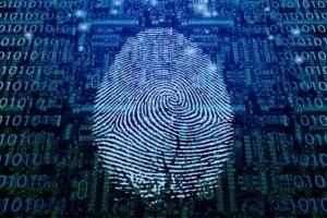 指纹识别新技术可提取皮下3毫米生物信息 填补传统技术漏洞