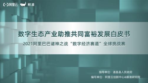阿里云创新中心、鲸准研究院发布《数字生态产业助推共同富裕发展白皮书》